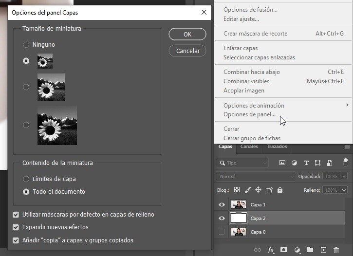 Acciones Photoshop Img. 7